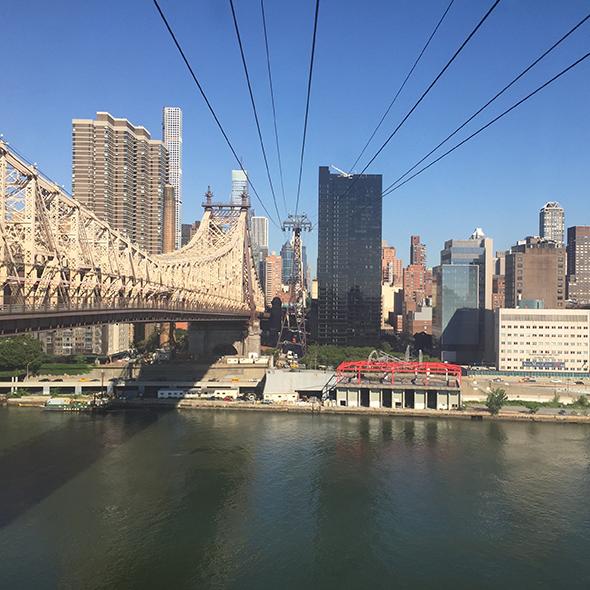 fatamadrina a New York